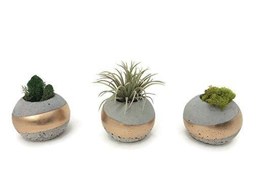 ORB Concrete Succulent Planters. Set of 3. GOLD (Concrete Decor)