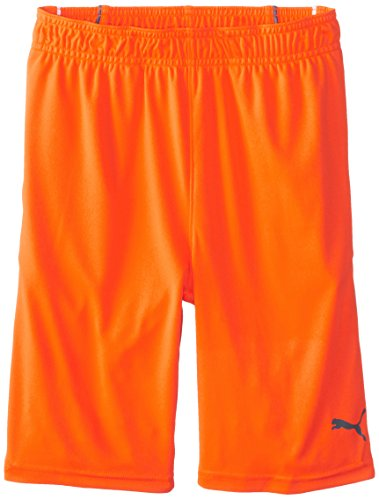 PUMA Big Boys' Pure Core Short, Fire Orange, Small