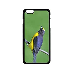 The Bird Hight Quality Plastic Case for Iphone 6 by lolosakes