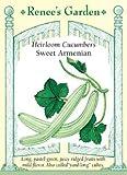 Cucumber, Heirloom Armenian