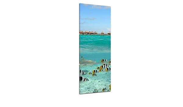 Bilderdepot24 Cuadros en Lienzo Panorama Tiburón y Pescados en Bora Bora - Polinesia Francesa 40x120 cm 3 Piezas - Enmarcado Listo Bastidor Imagen. Directamente Desde el Fabricante: Amazon.es: Hogar