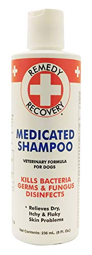 Remedy+Recovery Medicated Shampoo for Dogs - Veterinary Formula, Kills Bacteria, Germs & Fungus, Disinfects, Relieves Dry, Itchy Skin Problems (8 oz. Bottle)