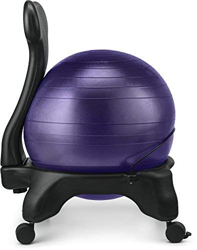 LuxFit Ball Chair For Home And Office