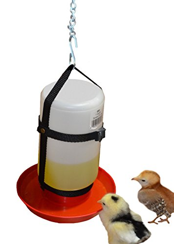 Your Happy Chicks 1 Qt. Hanging Harness with Plastic Bottle and Waterer Base Waterer Base