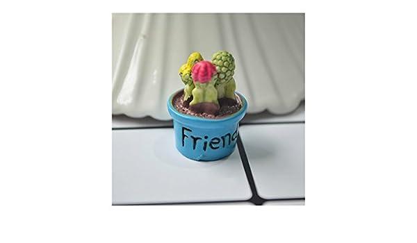 Kxrzu Estupendo Miniature Cactus Fairy Garden Micro Paisaje casa de muñecas Figurine Decor Bonsai (Amigo): Amazon.es: Hogar