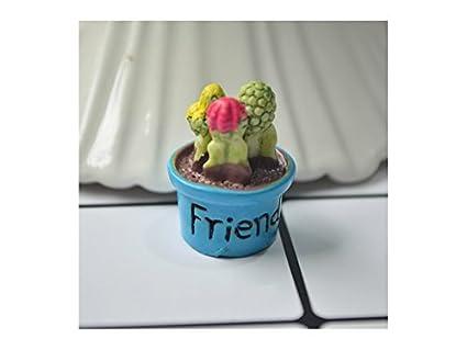 Kxrzu Estupendo Miniature Cactus Fairy Garden Micro Paisaje casa de muñecas Figurine Decor Bonsai (Amigo