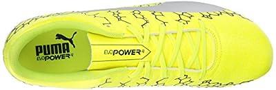 PUMA Men's Evopower Vigor 4 Graphic FG Soccer Shoe