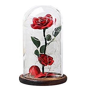 Beauty and The Beast Rose Kit, SMTSMT-Flower Red Silk Rose and Led Light with in Glass Dome on Wooden Base for Home Decor Holiday Party Wedding Anniversary Valentine's Day Christmas Birthday Gift