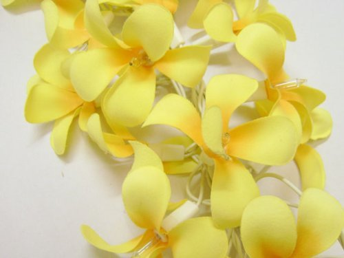 GaanZaLive36 Thai Handmade 20 Romantic Natural silk Flower Fairy String Lights Patio Wedding Party Vanity Kid Wall Lamp Floral Home Decor 3m (Frangipani,Yellow) by GaanZaLive36
