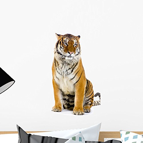 - Wallmonkeys Tiger Assisi Wall Decal Peel and Stick Graphic WM317748 (18 in H x 13 in W)