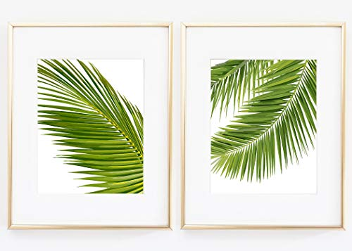 Set of two Palm Tree Leaf Plant Flower Tree Home room Decor Wall Art Print Color 8