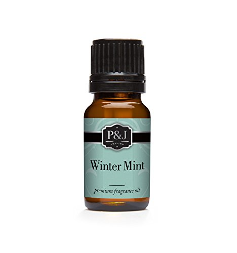 Winter Mint Fragrance Oil - Premium Grade Scented Oil - 10ml (Winter Scents)