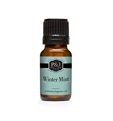 Winter Mint Fragrance Oil - Premium Grade Scented Oil - 10ml (Scents Winter)