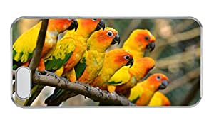 Customized sale iphone 5S covers Beautiful birds yellow parrots PC Transparent for Apple iPhone 5/5S