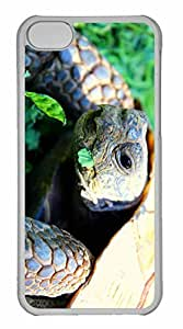 iPhone 5C Case, Personalized Custom Turtle 2 for iPhone 5C PC Clear Case