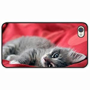 iPhone 4 4S Black Hardshell Case kitten lying mugs gray Desin Images Protector Back Cover
