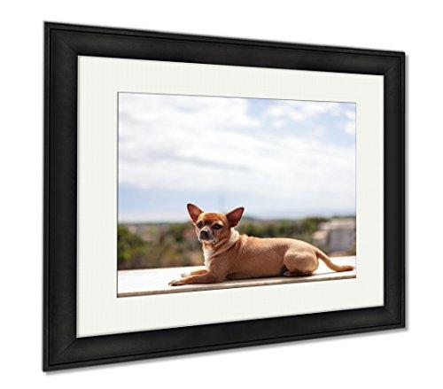 Ashley Framed Prints Dog On Bricks Wall, Modern Room Accent Piece, Color, 34x40 (frame size), Black Frame, AG6337996