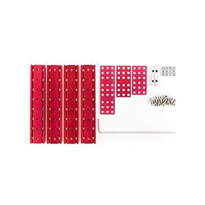 OSEPP Electronics Double Beam -08 Kit: Toys & Games