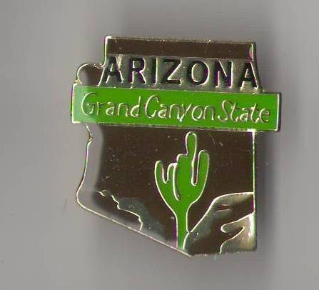 State Shaped Pin, Hat, Tie, Lapel, Etc. All States Available (Arizona) ()