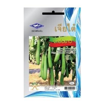 200 Seeds Eggplant Long Green Thai Vegetable Plant Chia Tai