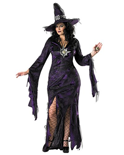 [Plus Size Purple and Black Witch Costume Webs Nets Womens Theatrical Costume Sizes: 2X] (Sexy Witch Costumes Plus Size)