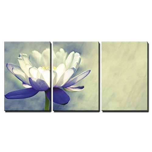Water Lily x3 Panels