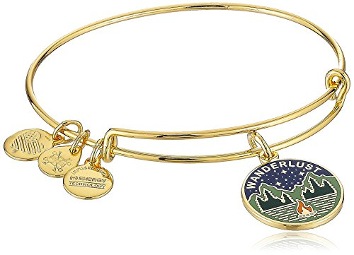 Alex Ani Powerful Wanderlust Bracelet