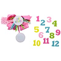 Mud Pie Baby-Girls Newborn Monthly Milestone Headband, Pink, One Size