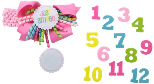 Mud Pie Baby-Girls Newborn Monthly Milestone Headband, Pink, One Size