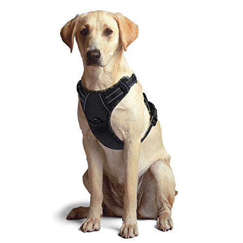 Best No-Pull Dog Harness Adjustable Pet Vest Harnesses for Large Dogs, Escape Proof Easy Control with Handle & 2 Metal Leash Clips, Soft Comfortable Padded & Reflective Strips for Safe ()