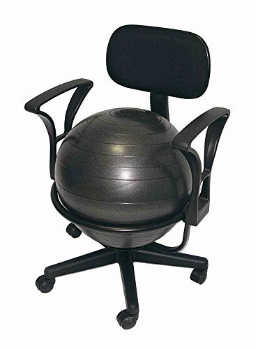 Aeromat Ergonomic Ball Office Chair