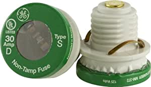 GE 18253 30 Amp Time Delay Type S/SL Fuse, 2-Pack