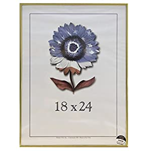 18 x 24 metal i picture frame gold