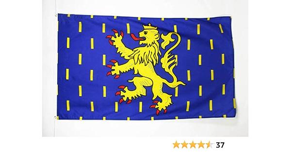 AZ FLAG Bandera de Franco Condado 150x90cm - Bandera DE FRANCHE-COMTÉ - Francia 90 x 150 cm: Amazon.es: Hogar