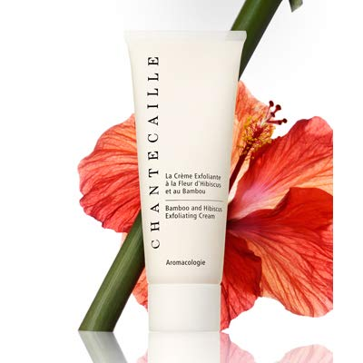 Chantecaille Bamboo and Hibiscus Exfoliating Cream, 2.55 Ounce