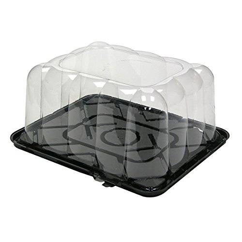 rectangle clear container - 7
