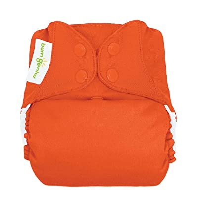 bumGenius Freetime All-In-One One-Size Snap Closure Cloth Diaper from Cotton Babies
