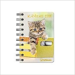 Kittens 2017. Taschenkalender Deluxe B019PWEWH0