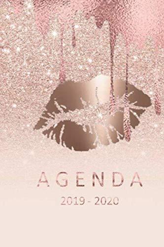 agenda 2019- 2020: agenda 2019-2020 del 1 de julio del 2019 al 31 de diciembre del 2020 ideal para el regreso a clase con 80 hojas planificación semanal (Spanish Edition)