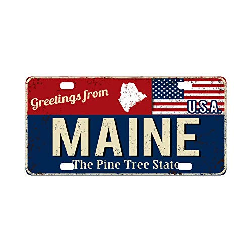 INTERESTPRINT Vintage Greetings from Maine The Pine Tree State with American Flag Aluminum License Plate 6