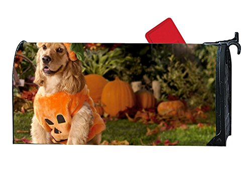 (jiajufushi Unique Mailbox Makeover Dog Dressed As A Pumpkin Mailbox Covers Home,Outdoor,Yard)