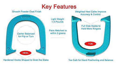 Buy horseshoes for flip