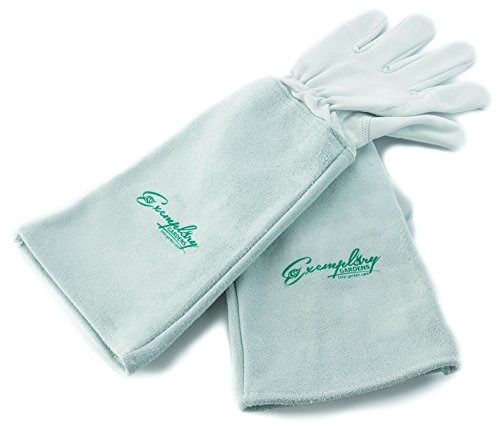 Rose Pruning Gloves for Men and Women. Thorn Proof Goatskin Leather Gardening Gloves with Long Cowhide Gauntlet to Protect Your Arms Until The Elbow (Large) ()