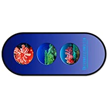 """Pencil Case Make Up Pouches Case Pen Bag Pencil Case Makeup Storage Purse School Case OVAL - Design """"Dres. Thorausch – Underwater Photography"""" (23x9x7cm) modern design ( V.I.P. Pictures World powered by CRISTALICA )"""