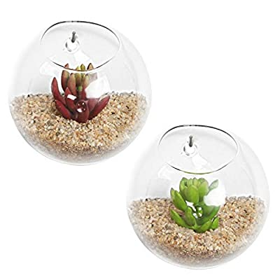 MyGift Set of 2 Wall Mounted Clear Glass Terrariums/Air Plant Globes/Hanging Candle Display Bowl Jars : Garden & Outdoor