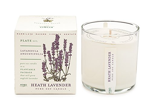 Heath Lavender Soy Candle with Plantable Box by Kobo Candles