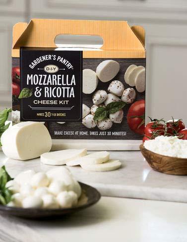 Ricotta Cheese