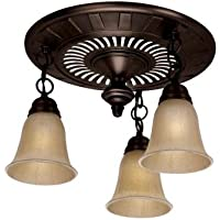 Hunter Garden District Decorative Rubbed Bronze 70 CFM Ceiling Ultra-quiet Exhaust Fan