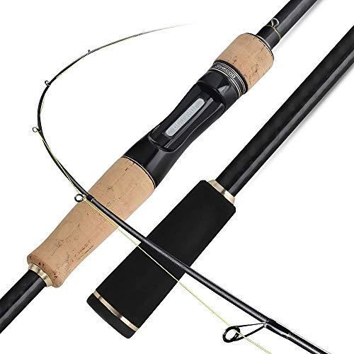 - DONG Spinning Rod Spinning Rod Carbon Spinning Freshwater Fishing Carp Fishing Rod Carbon/Bass Fishing/Lure Fishing/General Fishing,Black+Gloden