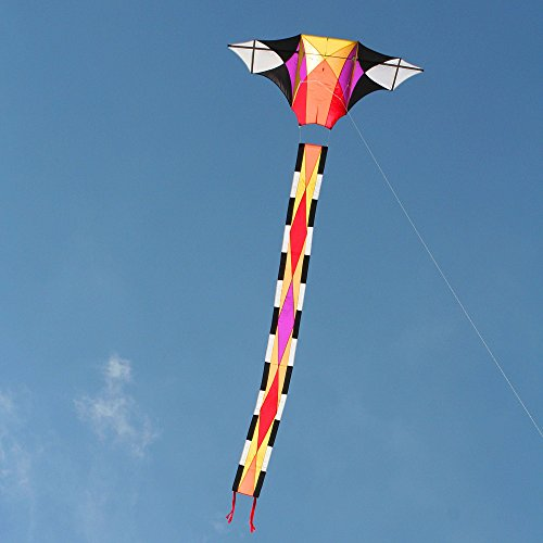 Into The Wind Scintillation Kite by Into The Wind